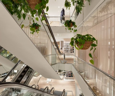moving stairs and hanging plants in a modern fashion store